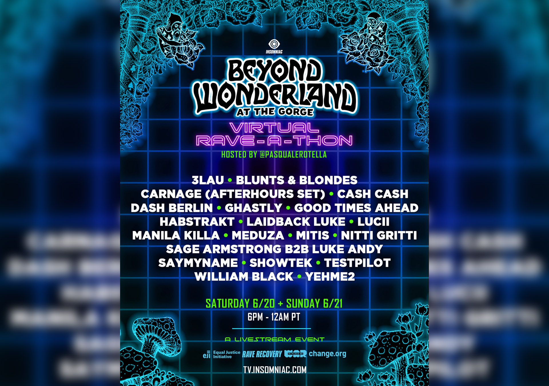 Virtual Beyond Wonderland